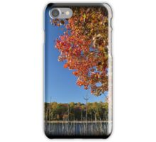 Color Cove Afternoon iPhone Case/Skin