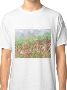 Springtime Garden Classic T-Shirt