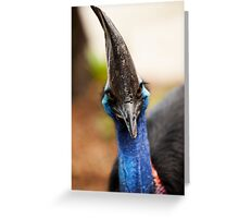 Here's looking at you, Kid! Greeting Card