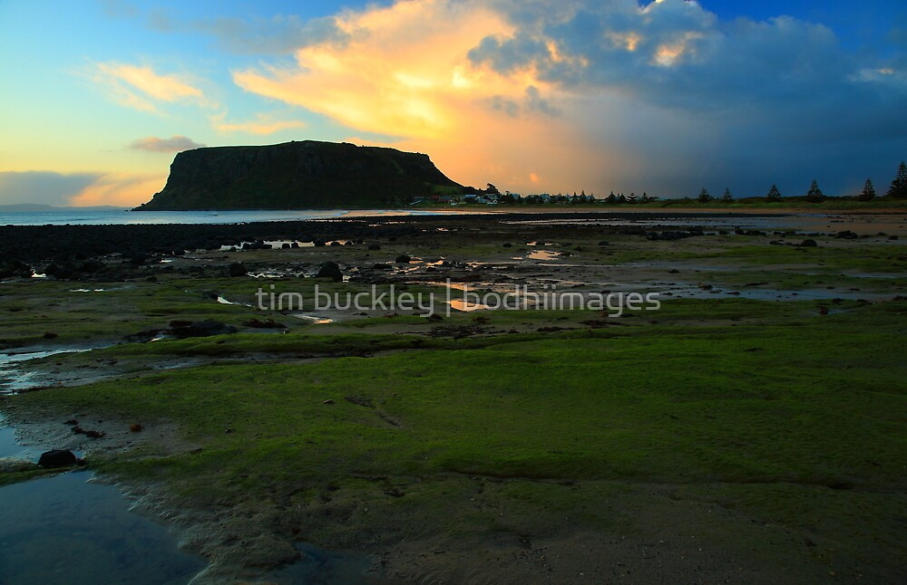 incoming storm, the nut. stanley, northwest tasmania by tim buckley | bodhiimages