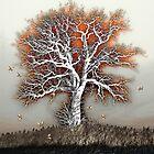 The Tree of Life by wiscbackroadz
