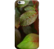 Morning Sprinkles iPhone Case/Skin