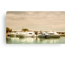 Rescue Forster 01 Canvas Print