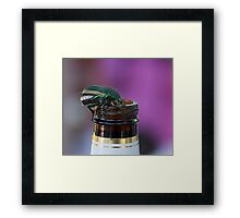 Beer Bottle Beetle Framed Print