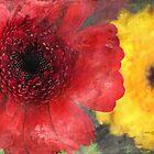 swirls of colour by Teresa Pople
