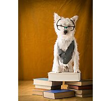 Nerd Dog Photographic Print