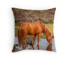New Forest pony at waterhole with reflection Throw Pillow