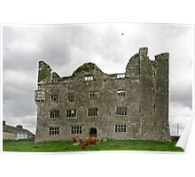 Leamanagh Castle Poster
