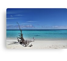 Island Sculpture Canvas Print