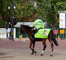 Mounted Police Officer in London by Sue Robinson