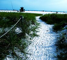 Trail To The Coast by allthingsnatura