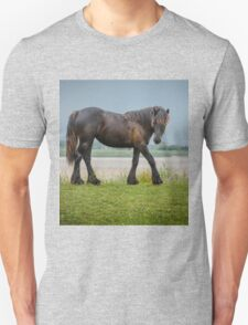Horse, my hair needs a brush! Unisex T-Shirt
