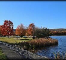 Autumn Lake Park by Tim Holmes
