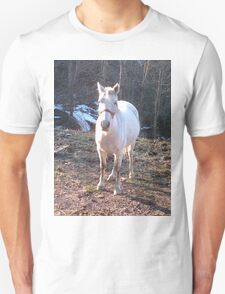 Pretty White Horse Standing in a Small Field T-Shirt