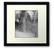 Virgina Snow Framed Print