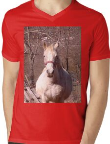 Friendly Horse Coming to Visit Attractive Camera Guy Mens V-Neck T-Shirt