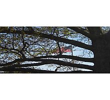 Manassas Flag Photographic Print
