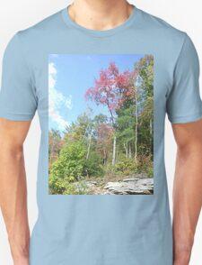 Pretty Rustic Appalachia Scene Rock & Trees T-Shirt