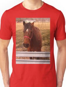 Pretty Brown Horse by a Fence in West Virginia Unisex T-Shirt