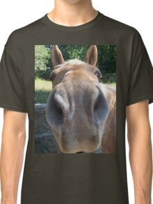Very Friendly Brown Horse Close Up Classic T-Shirt
