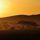 """The Gold of the Serengeti"" by Andreas Koerner"