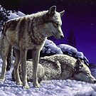 Night Watch - Wolves Oil Painting by csforest