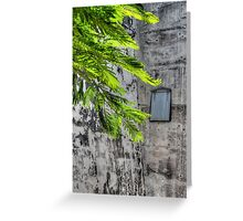 The Hidden Window at Fort Charlotte in Nassau, The Bahamas Greeting Card