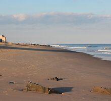 October Beach by Trish Nicholas