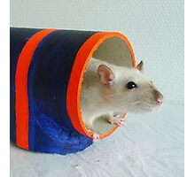 Lumi in a tube Photographic Print