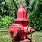 Fire Hydrant in Paradise Island, The Bahamas by 242Digital