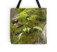 Licorice Root Fern Tote Bag