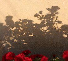 Mum Silhouette by Trish Nicholas