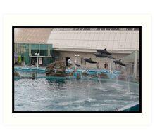 Dolphins flying Art Print