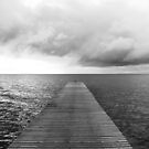 Pier BW 2012 by Falko Follert