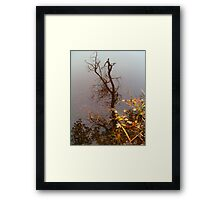 Octobers Reflection... Framed Print