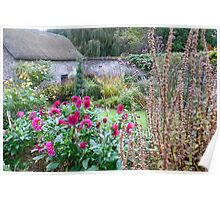 Cottage Garden with Crimson Dahlias Poster