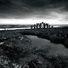 Cnoc Fyrish by TinDog