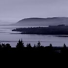 Cromarty Firth by TinDog