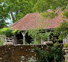 Old Barn by Sue Robinson
