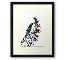 Tui on Flax Framed Print