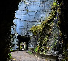 Othello Tunnels by Sara Bawtinheimer