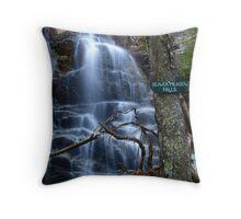 Beaver Meadow Falls Throw Pillow