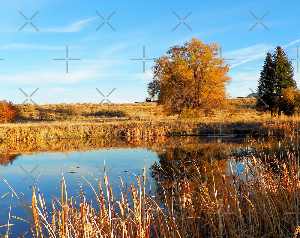 Reflections of Fall by Betty  Town Duncan