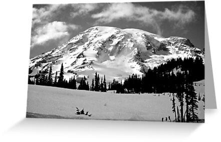 Mount Rainier by Chaney Swiney