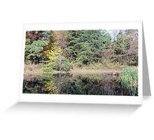 Jefferson Memorial Forest II, near Louisville, Kentucky Greeting Card