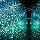 Born A Dragonfly by BobbiFox