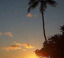 Aloha, Hawaiian Sunset,  by SoulTribePhoto