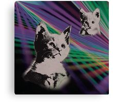 Cat on We Have Lasers Canvas Print