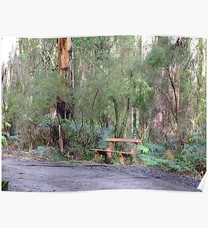 bush seat Poster