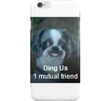 DING US iPhone Case/Skin
